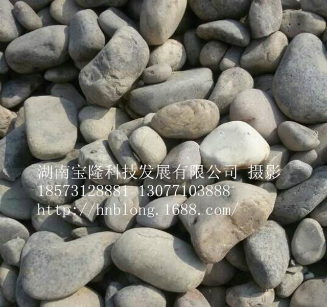供应长沙砾石优质砾石 建筑砂石 搅拌站用砂石 湖南四大河段直供