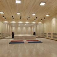 供应阳江最安全省电的高温瑜伽房安装 品质好价格优惠的高温瑜伽房安装 热瑜伽与普通瑜伽有哪些好处