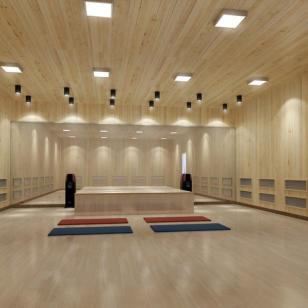 湘潭高温瑜伽房安装图片