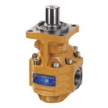 供应CBGTB2080-BLH合肥长源齿轮泵
