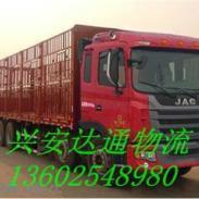 深圳到长沙宠物运输图片