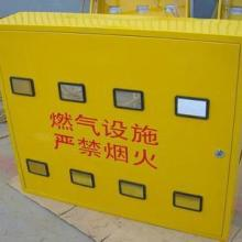 供应SMC玻璃钢燃气表箱|不锈钢材质表箱|供应1-12孔燃气表箱专业生产厂家图片
