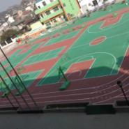 东莞排球场地面漆图片