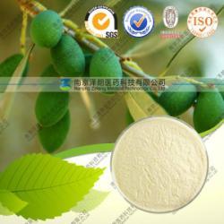 供應橄榄苦苷(橄榄葉提取物)