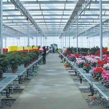 供应花卉育苗床网