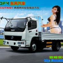 供应双燃料多功能货车低能耗的物流工具