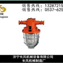 長風機械供應DGS60防爆白熾燈現貨供應-質量至上圖片