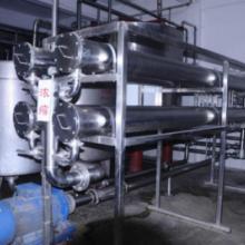 供应开口菌产品冻干乳酸菌奥迪尔厂家批发