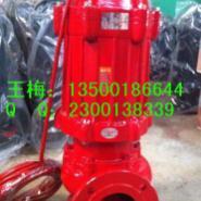 80WQ40-15-4高温潜水泵图片