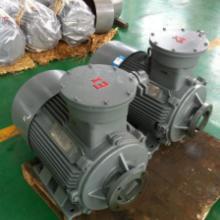 供应邵阳维克液压的柱塞泵电机