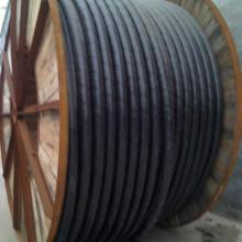 供应邢台哪里回收废电缆