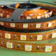 LED5050-60珠毒牙12V灯带图片