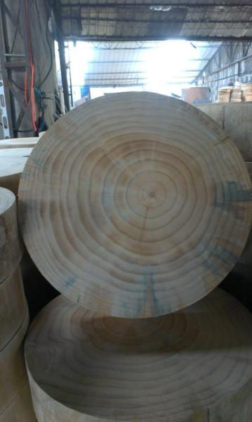 供应临沂实木菜板