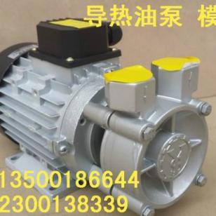 YS-30A高温马达图片