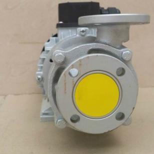 YS-20B水温机马达图片