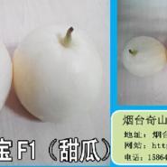 盛-奇雪宝甜瓜种子图片