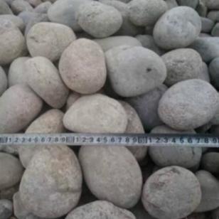 河北3-5cm公园鹅卵石加工厂家图片