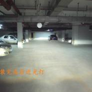 奥迪A8大灯图片