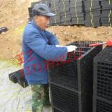 供应北京虹吸雨水/雨水收集系统-造价
