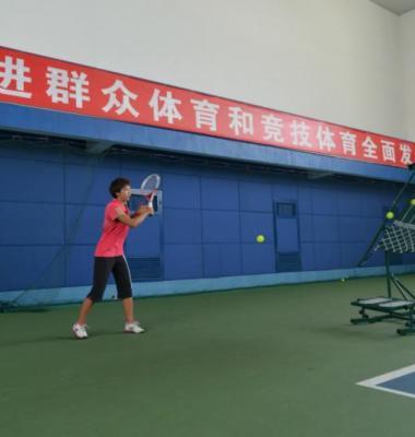 网球训练器图片/网球训练器样板图 (2)