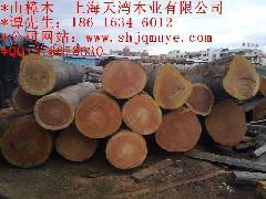 供应湖北山樟木厂家 2015山樟木图片 山樟木价格 山樟木那里有的买
