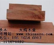 河南红铁木图片