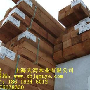 福建红雪松板材批发价格图片