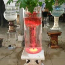 供应能插电的玻璃瓶厂家 凯奇盆艺专利花瓶 水培花盆 工艺摆件 仿古花盆图片