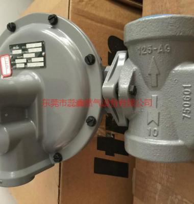 燃气调压器图片/燃气调压器样板图 (4)
