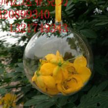 供应厂家订做大型空心圆球亚克力球 亚克力圣诞球 有机玻璃圆球