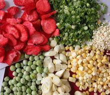 出口美国冻干罐头设备冻干宠物食品加工设备业务:13806475273