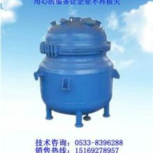 电加热搪瓷反应釜 开式 K2000L
