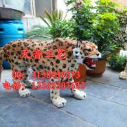 森林豹子仿真豹子模型照相道具图片