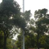 供应通信灯杆塔