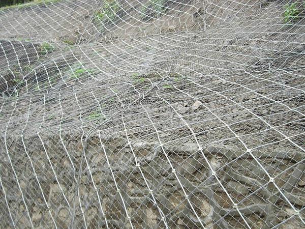 供应边坡防护网,山体滑坡覆盖钢丝绳网--舟山普陀聚达金属丝网
