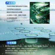 供应物联网水下监控系统水下摄像机图片