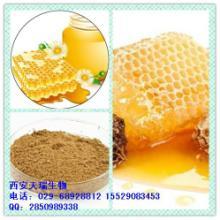 供应蜂蜜提取物