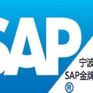 宁波SAP公司图片