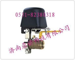 家用天然气报警器图片/家用天然气报警器样板图 (1)