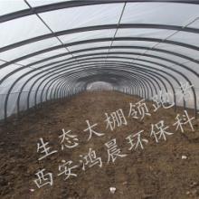 供应农业大棚