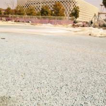 供应胶粘石透水地坪彩色露骨透水混凝土厂家直销包工包料批发