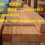 聊城红雪松板材加工厂图片