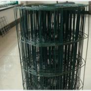 300丝6孔230米41公斤浸塑围栏网图片