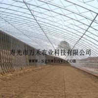 冬暖式大棚全钢架型寿光市万禾农业