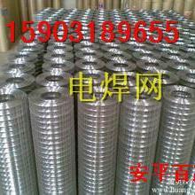 供应铁丝网片-外墙保温网