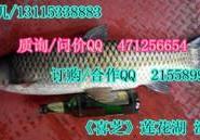 大草鱼图片