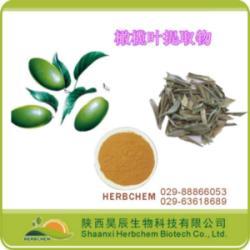 橄榄苦甙10,20,40 护肤、嫩肤
