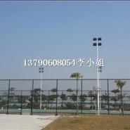 广东圆管锥形灯杆厂家图片