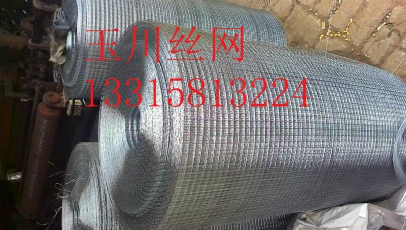 供应优质小丝电焊网