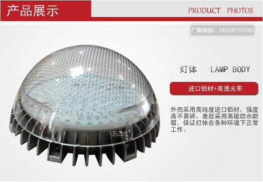 LED七彩装饰灯